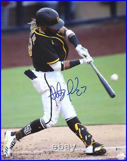 Fernando Tatis Jr. Autographed Signed 16x20 Photo Padres Beckett 181119